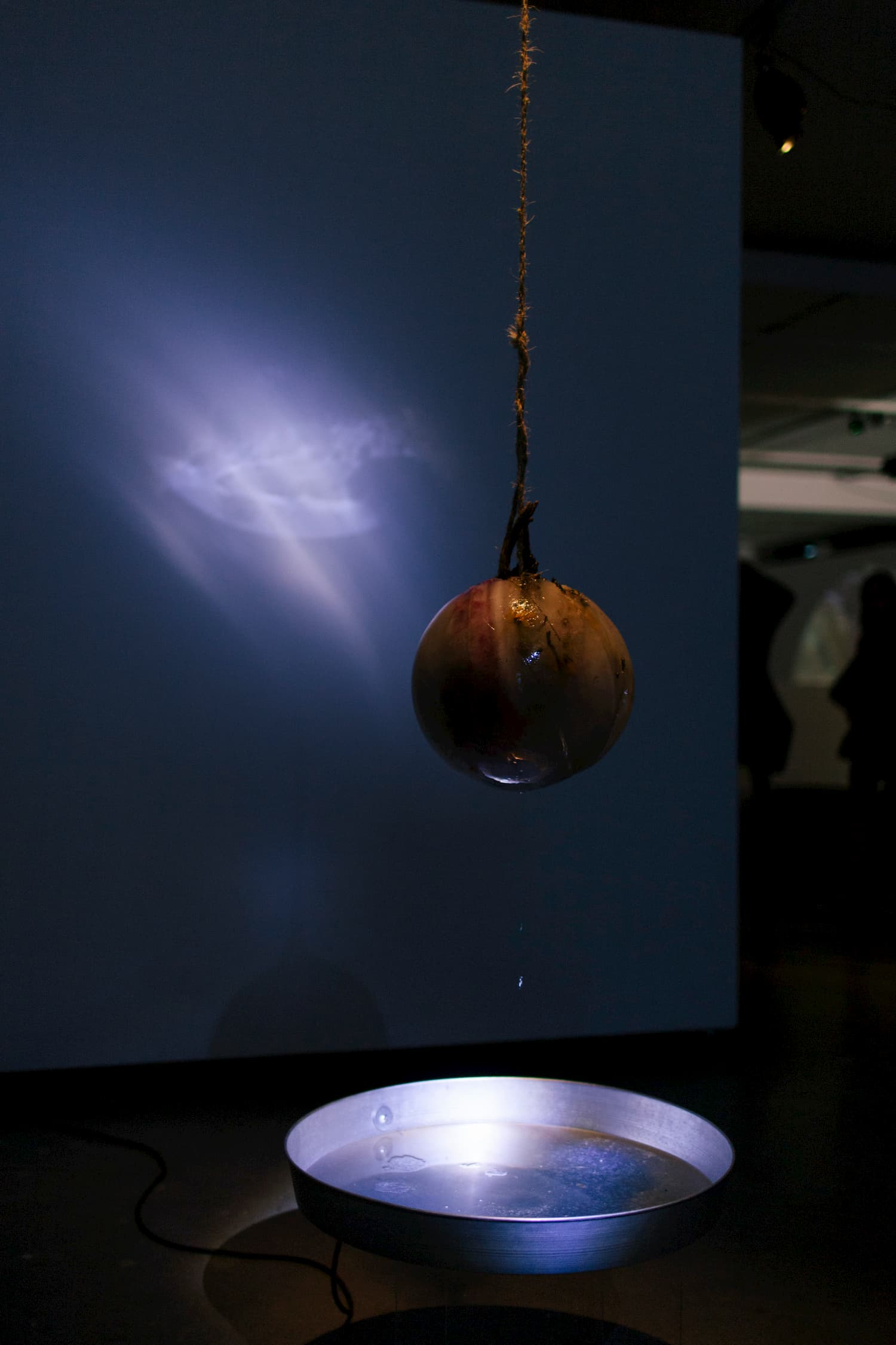Sphere hanging by a style of thread over a pan of water. Joteva's solo show.