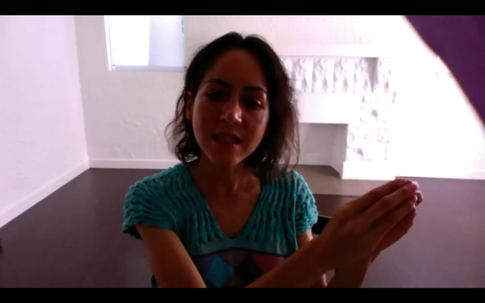 Screenshot of Carmen Argote explaining her work.