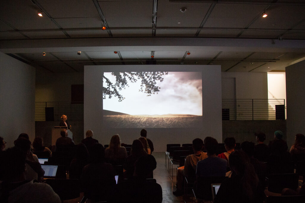 Picture of a landscape being projected on the EDA pit walls.