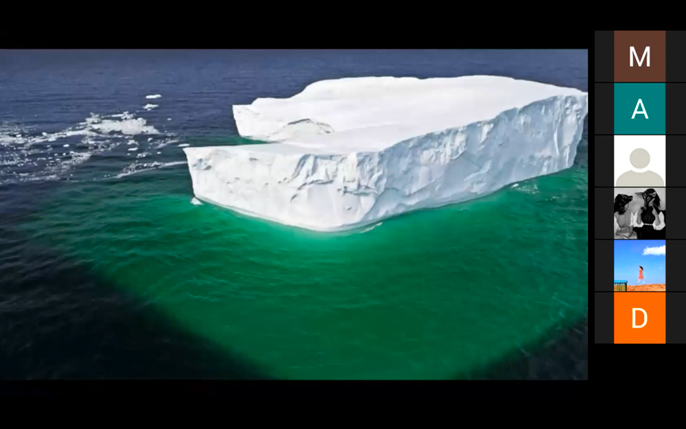 Picture of an iceberg during Nora Khan's presentation.